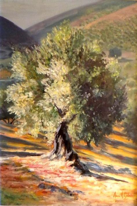 best 25 olive tree ideas on indoor olive tree