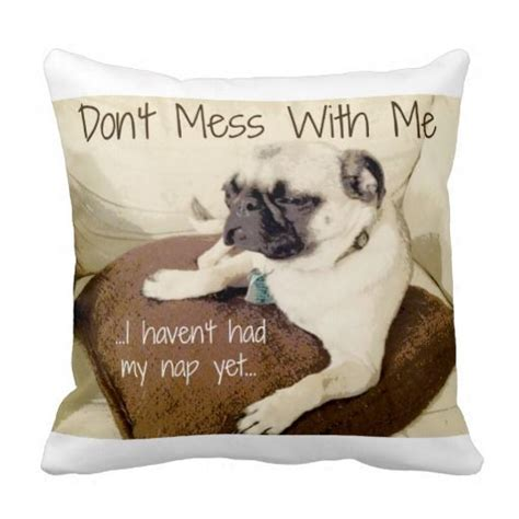 why does my pug everything 46 best images about pet related products on shadow box pug and