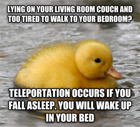 Mallard Duck Meme - livememe com baby advice mallard