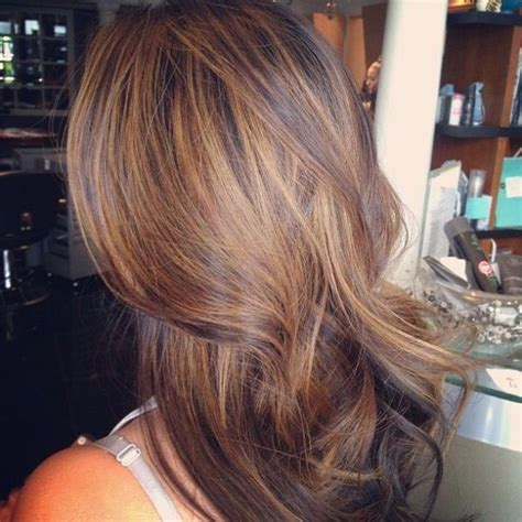 Low Light Hair by 25 Best Low Lights Ideas On Brown Hair With
