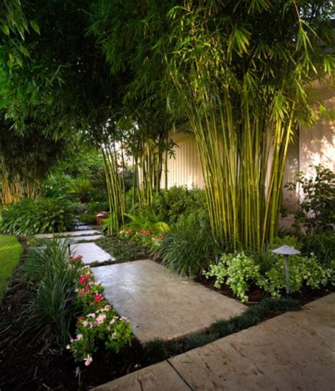 landscape inspiration bamboo garden design for asian landscaping concept ideas
