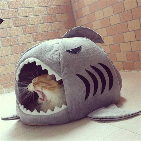 shark cat bed shark mouth teddy puppy dog pet cat house removable warm
