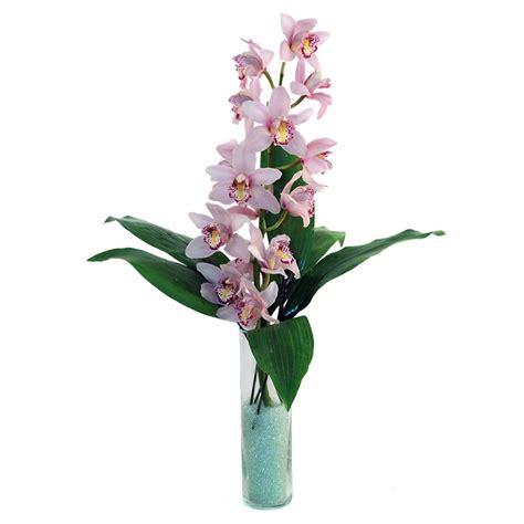 spedire fiori a fiori fiori economici consegna fiori a domicilio fiori