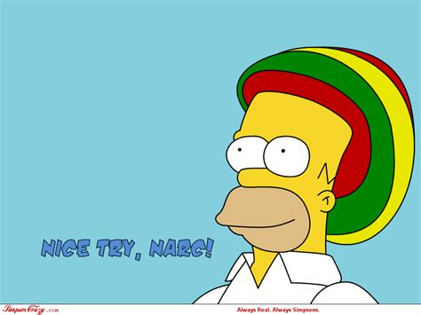 simpsons images homer wallpaper photos 6345082