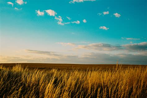 photos for free stock photo of agriculture countryside field