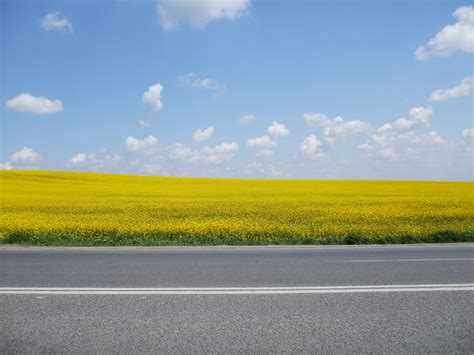 background jalanan дорога скачать обои и фото