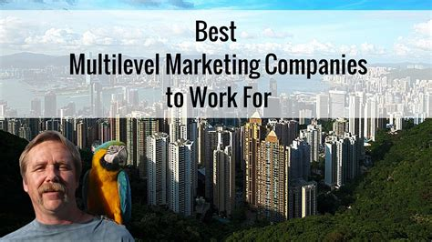the best multilevel marketing companies best multilevel marketing companies to work for