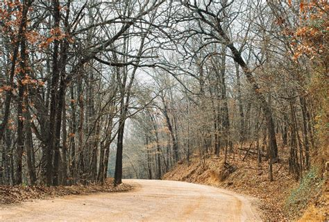 Records In Missouri Records Unidentified Vocalizations In Missouri Cryptozoology News