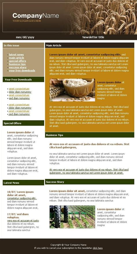 newsletter layout design pinterest newsletter template 12 jpg 602 215 1117 newsletter