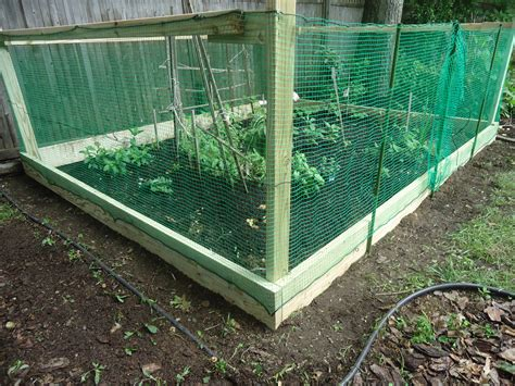 enolivier com vegetable garden with fence as long as fencing our garden water wine travel