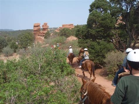 Garden Of The Gods On Horseback Academy Stables Tour Of Garden Of The Gods