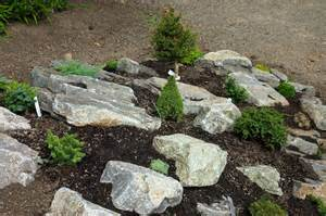 Rock In Garden Gardening Kenya Envision Your