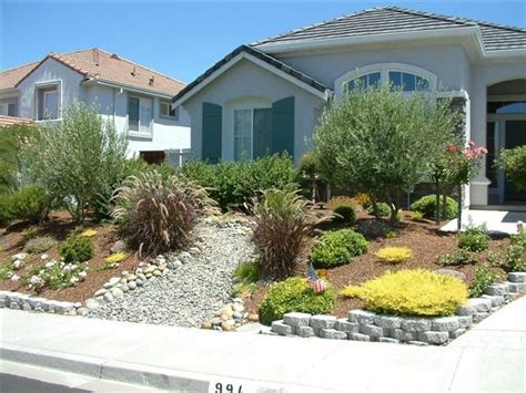 best front yards 41 best xeriscape images on landscaping ideas