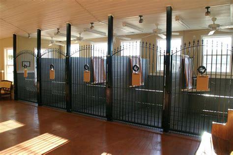 kennel ideas enclosures indoor guide