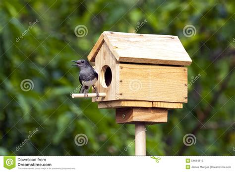 magpie house design robin bird houses plans free 28 images free bird house plans easy build designs