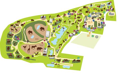 zoo layout design zoo map colchester zoo 서울대공원 pinterest colchester