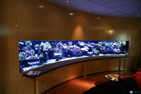 aquarium le led pieter suijlekom s reef aquarium revisited