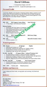 5 good cv examples for first job invoice template download