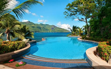 wallpaper sea pool resort palm trees tropical