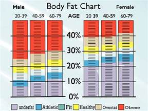 Average Bench Press By Weight And Age Healthy Diets For Teens Find Body Fat Percentage Using