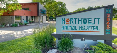 hospitals in plymouth mn veterinarian in plymouth mn northwest animal hospital
