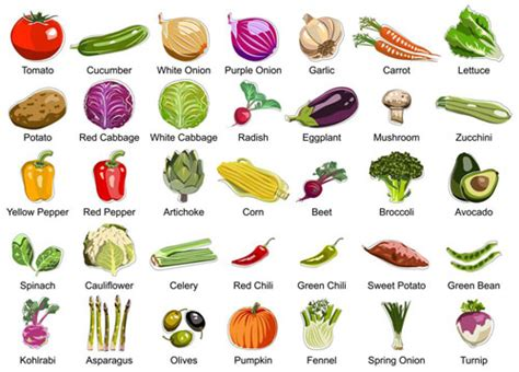 vegetables with english names english reading practice what happens to your body when