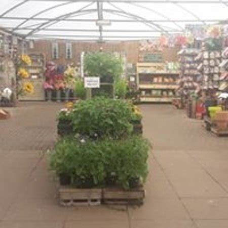 whisby garden centre lincoln omd 246