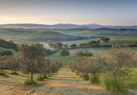 Home Landscapes lee frost photography val d orcia tuscany italy