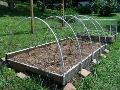 Building Garden Fence Boxes Vegetable Garden Netting Frame
