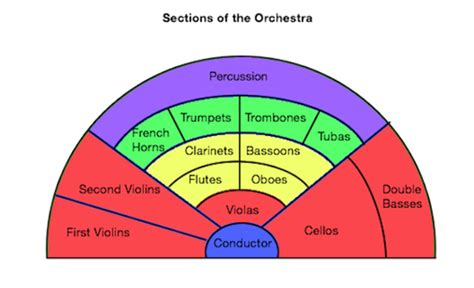 The Sections Of The Orchestra orchestra definition sections layout lesson