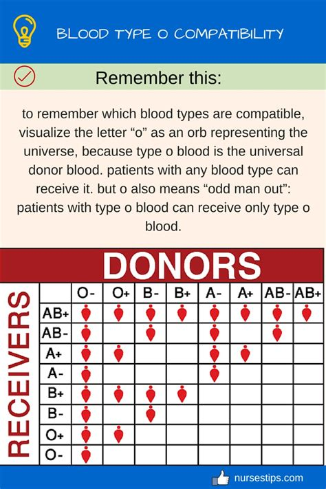 blood type o compatibility nurses tips