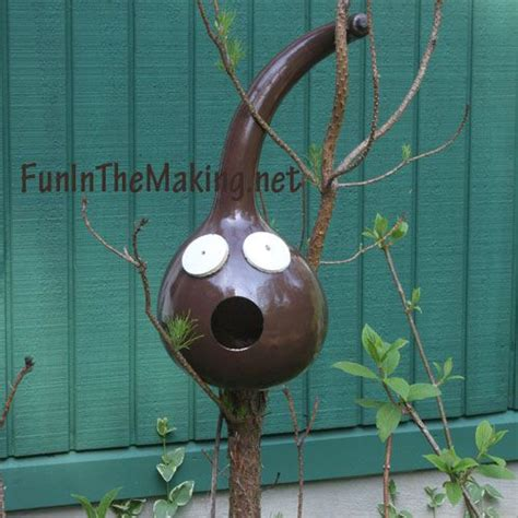 bird house gourds diy fun gourd bird houses diy crafts pinterest
