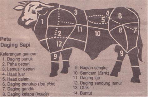 memilih  mengolah daging sapi mbokratus blog