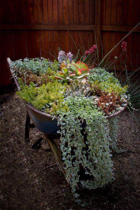 Wheelbarrow Garden Ideas The 25 Best Wheelbarrow Garden Ideas On Pinterest Wheel Barrow Ideas Small Garden