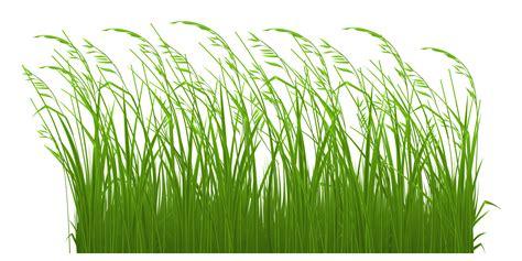 grass clipart free flowers free clip grass clipart clipartbold clipartix