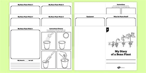 Galerry plant life cycle printable poster