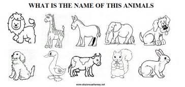 new 545 kindergarten worksheet on animals kindergarten