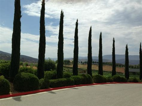 jeep tour temecula road to winery picture of sunrider jeep and wine tours
