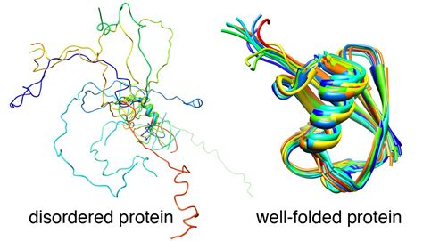 protein elements softsimu blogs preformed structural elements in