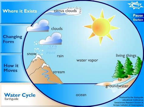 a diagram of the water cycle the water cycle 2nd grade