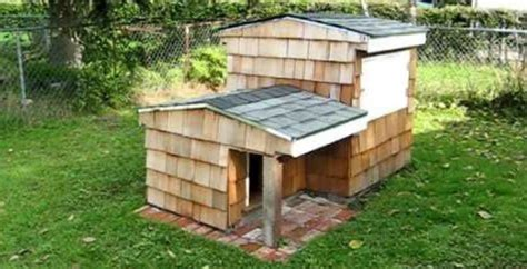 underground dog house this dog house has an awesome underground compartment built into it boredombash