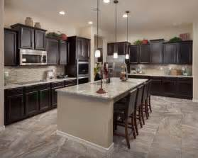 Dark Cabinet Kitchen by Dark Cabinet Kitchens Houzz