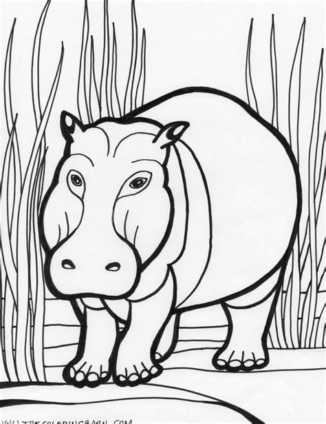christmas hippo coloring page hippopotamus animals coloring pages kids coloring pages