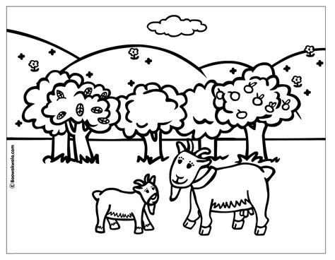 pygmy goat coloring page pygmy goats coloring page az coloring pages