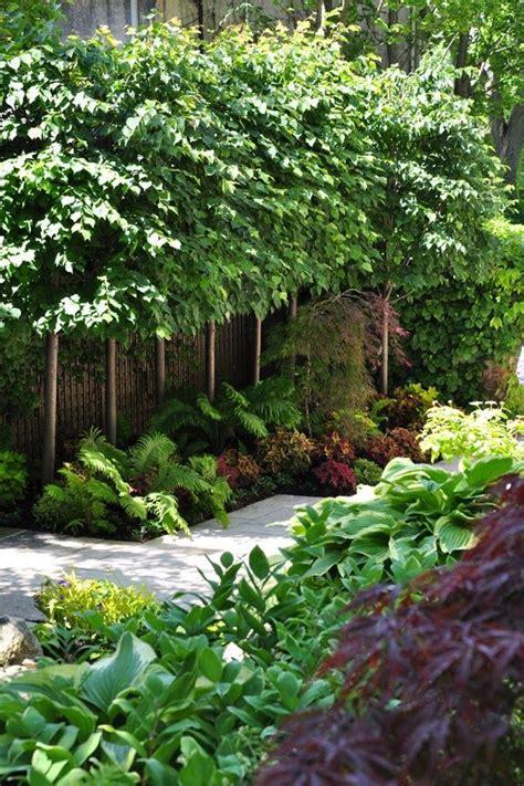 great landscape ideas color texture small landscape trees keep it watered in birmingham al