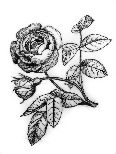 tattoo pen rose ink rose by hydrocyanic acid on deviantart