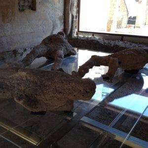 l orso della casa pompei ritrova la meraviglia della casa di sirico e dell