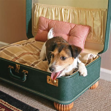 suitcase dog bed make a simple suitcase pet bed do it yourself projects capper s farmer