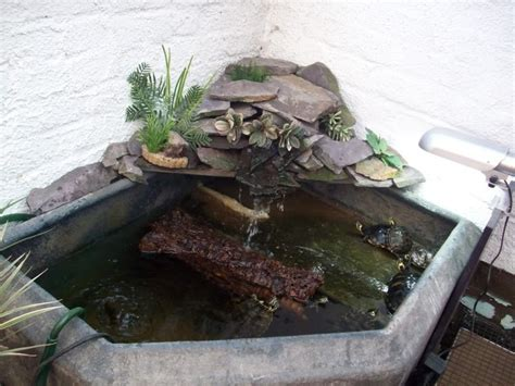 Indoor Ponds by 4 Water Feature Ideas In The Home Contemporary Flavour