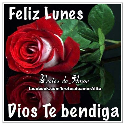 imagenes de feliz lunes dios los bendiga brotes de amor feliz lunes